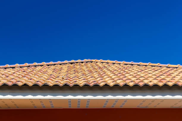 Red tile roof on a blue background.